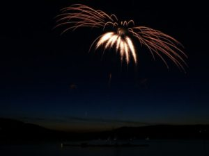 Florida Fireworks Bird Exemption - Brooks Law Group