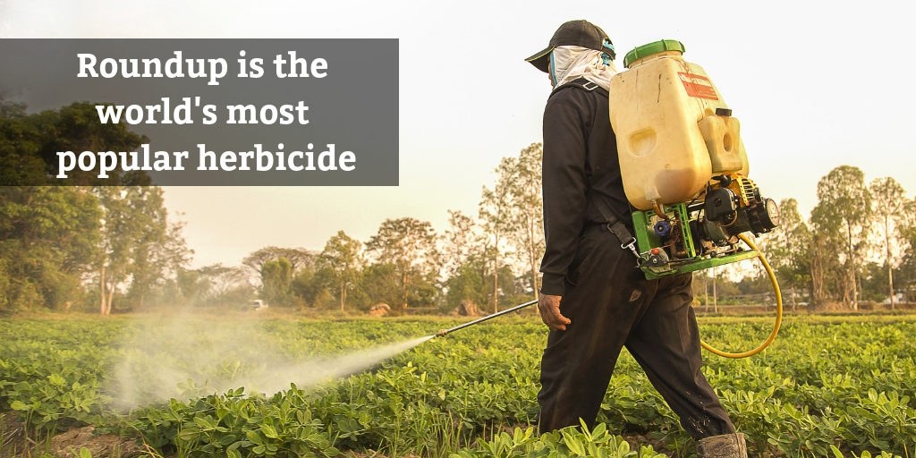 Round is the most popular herbicide in the world - Brooks Law Group