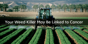 Your weed killer may be linked to cancer
